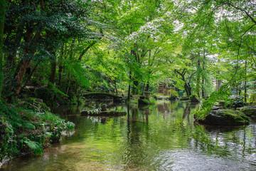岐阜県 金華山 岐阜公園 Kinkazan Gifu park in Gifu prefecture