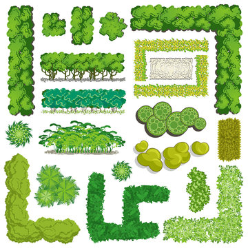 Trees and bush item top view \ top side for landscape design, vector icon