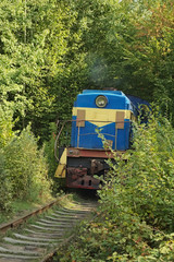 Tunnel of love. Locomotive. Autumn. (Klevan, Rivnenska obl., Ukr