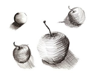 a set of pencil sketches drawn by hand - drawing training , the