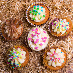 sweet colorful cupcakes with butter cream on hay background