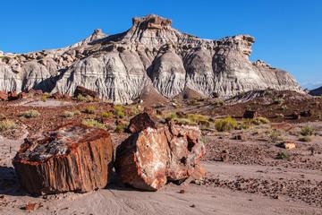 Painted Desert Badlands Petrified Forest