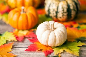 Halloween Kürbisse mit Herbst Blätter