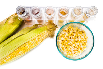 Corn generated ethanol biofuel with test tubes on white background