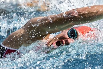 Kraulschwimmer im Wettkampf