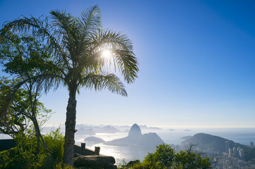 The sun rises behind a palm tree silhouette at a scenic skyline view over Guanabara Bay with a silhouette of Sugarloaf Mountain in Rio de Janeiro, Brazil