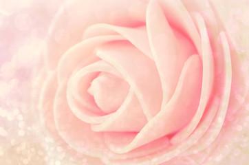 Close up Center Sepia Pink Roses.