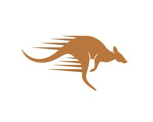 Fast Kangaroo And Kangaroo Jumping Quickly