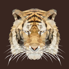 polygonal tiger, polygon geometric animal, vector illustration
