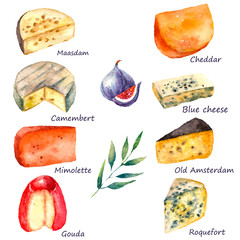 Watercolor cheese set.
