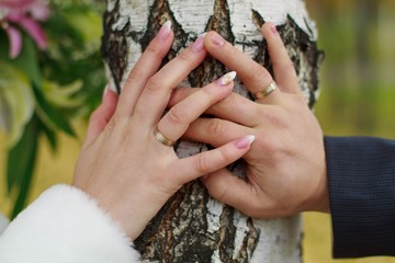 Man's and woman's hands with wedding rings