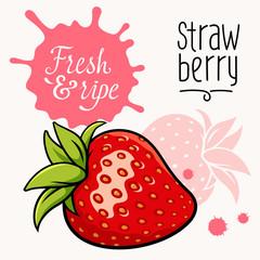 Strawberry concept 001