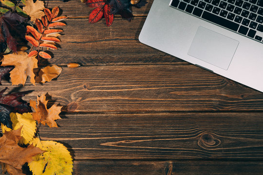 Background with laptop and autumnal leaves