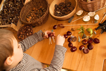 boy creating and playing with chestnuts and acorn toy