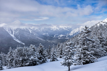 winter landscape of the Canadian Rockies, Banff, Canada