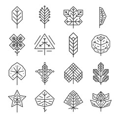 Hipster geometric thin line leaves for logos and emblems