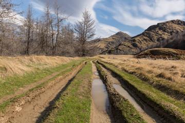 A rough dirt road