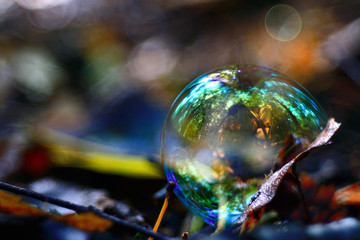unusual bubble background nature