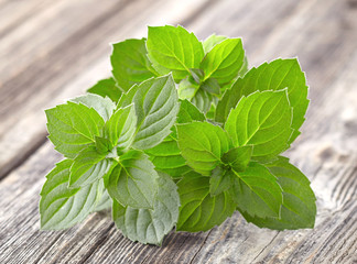 Mint on a wooden background