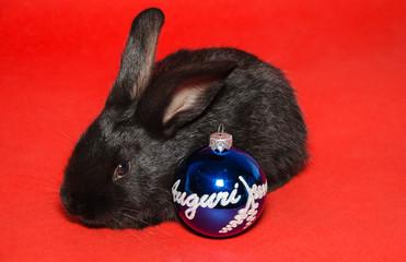 Cartolina d'auguri con coniglietto nero e palla di natale