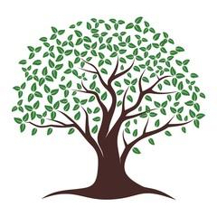 Oak Tree Vector. Oak tree logo illustration. Vector silhouette of a tree