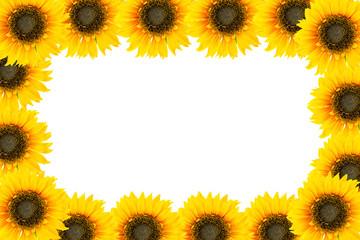 Sunflower frame isolated on white background