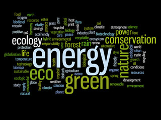 Conceptual ecology word cloud