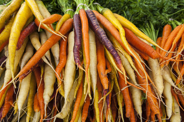organic carrots for sale at a Farmers Market