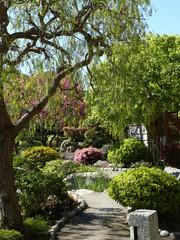 Scenic lake in the summer park Beautiful Garden. Green Lawn in Landscaped Formal Garden