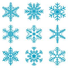 Snowflake isolated decoration vector icon set 02