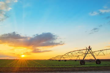 Automated farming irrigation system in sunset Fototapete