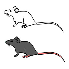 Rat, mouse - sketch, the drawing in color