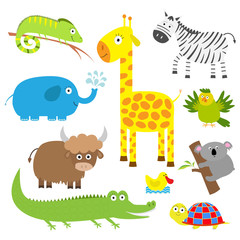 Cute animal set. Baby background. Koala, alligator, giraffe, iguana, zebra, yak, turtle, elephant, duck and parrot. Flat design