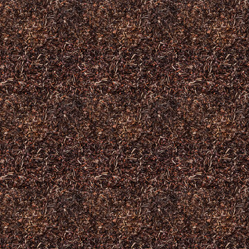 Seamless tiles texture of Birch bark for garden. Closeup of wood