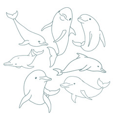 Seven contour Dolphin set collection, with dolphin jumping and swimming vector illustration.