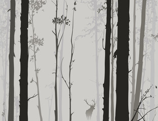 silhouette of the forest with deer 2