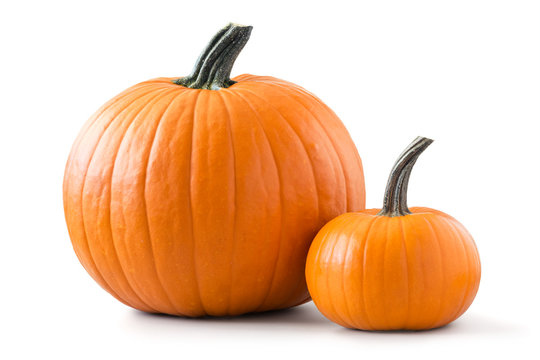 Two pumpkins isolated on white background