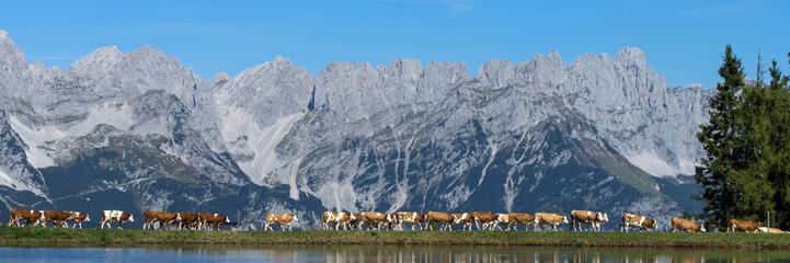 Wilder Kaiser, Tirol, Österreich