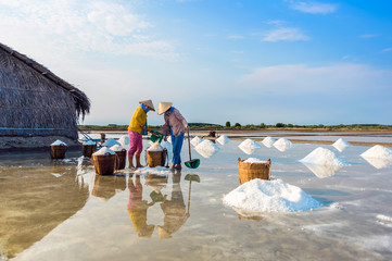 The women harvesting salt , Vietnam.