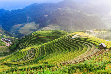 Fotobehang Rijstvelden Rice fields on terraced of Mu Cang Chai , Vietnam.