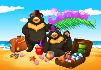 Two bears enjoy summer on the beach