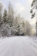 The winter road in the wood covered with snow.