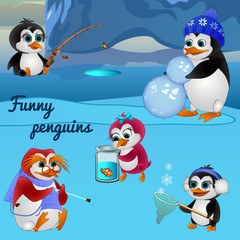 Funny penguins, busy with different things