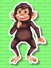 Little chimpanzee smiling alone