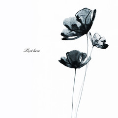 illustration of flowers in watercolor paintings on the white background. Hand painted illustration