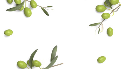 olive branch with drop of oil white background