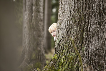 Little boy hiding behind tree trunk