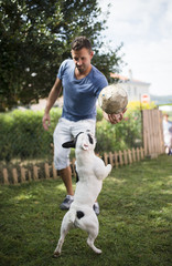 Man with a ball playing with a French bulldog