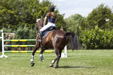 Horse and rider in jump course