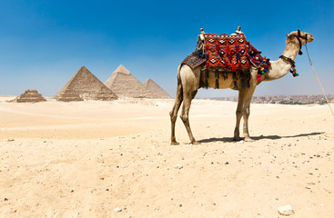 pyramids of Giza in Cairo, Egypt.
